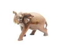 Слон суара (сс-62)