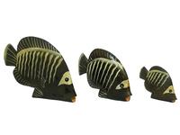 Набор рыб небольших, плоских, прямых (р-301, р-302, р-303)