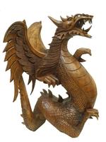 Дракон суара с крыльями, (дс-24)