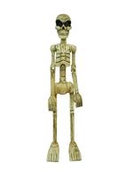 Скелет деревянный (чд-02)