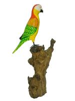 Попугай на дереве, 2 вида  (пт-137)