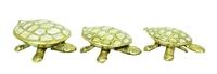 Черепаха латунная (чл-05, чл-06, чл-07)