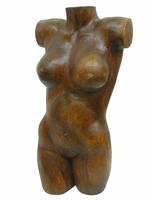 Арт суара: торс женщины/мужчины (ас-55)