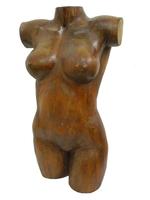 Арт суара: торс женщины/мужчины (ас-56)