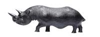 Носорог эбеновый, 4 вида (нэ-08)