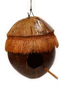 Скворечник из кокоса (с-568)