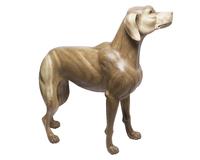 Собака суара (сс-92)