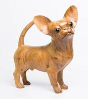 Собака суара Чихуахуа (сс-119)